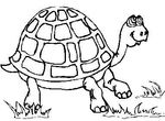 coloriage gratuit Tortues