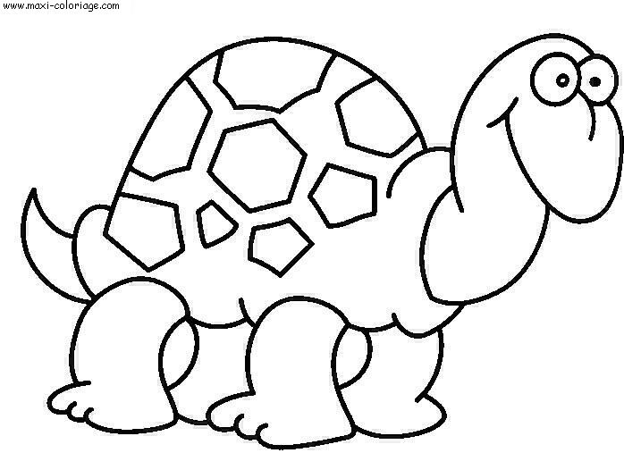 coloriage Tortues